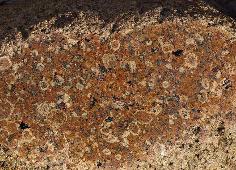 Die für den Ålandrapakivi (-Granit) sehr typischen Kalifeldspat-Augen mit den gelblichen Plagioklasringen sowie die Biotit-Aggregate sind nur am polierten Stein so prägnant